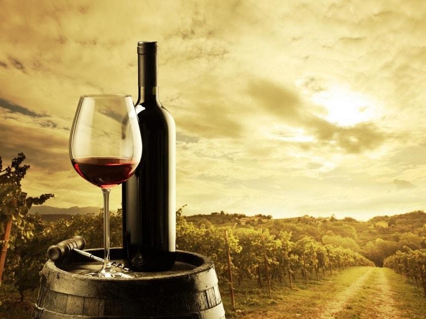 Сомелье, кависты, дегустаторы и критики хороши, но пить вино лучше самому. Ваше здоровье!